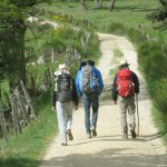 Stage coaching accompagnement par la marche à Saint-Jacques de Compostelle